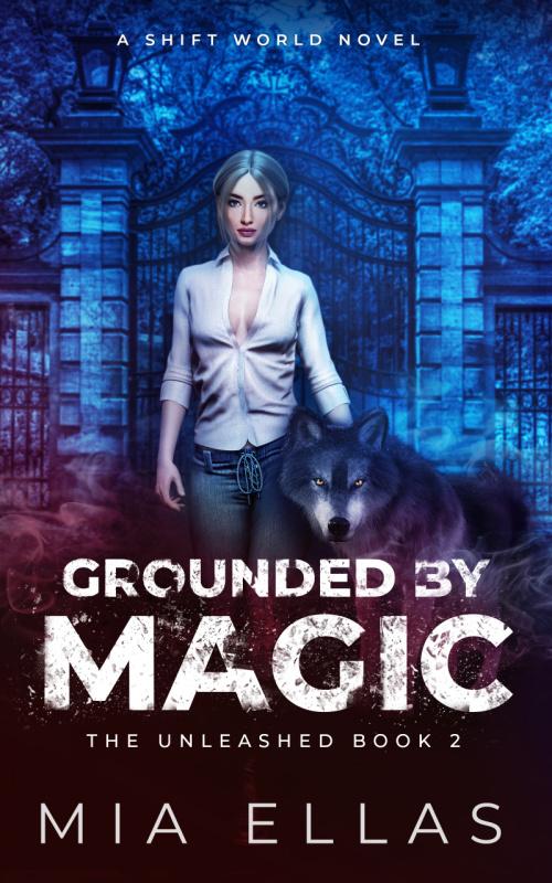 Locked in Magic - BOOK 0 (2)